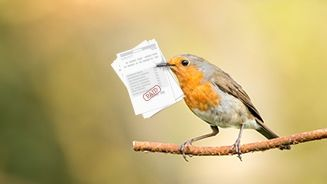 Be an Early Bird - File Your Taxes in Advance_671x382