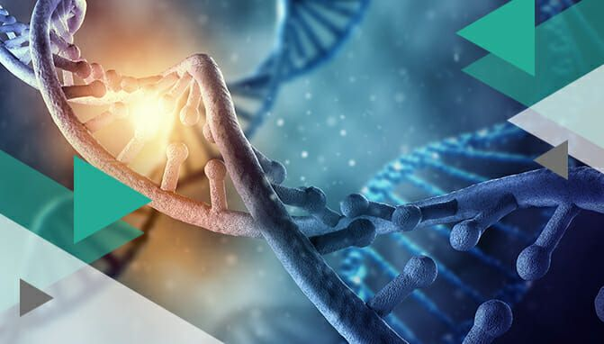 Best Dna Test 2019 6 Best DNA Test for Health In 2019: The Medical Edition