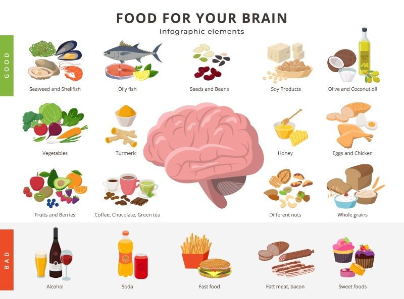 Brain Food Neuro Nutrition